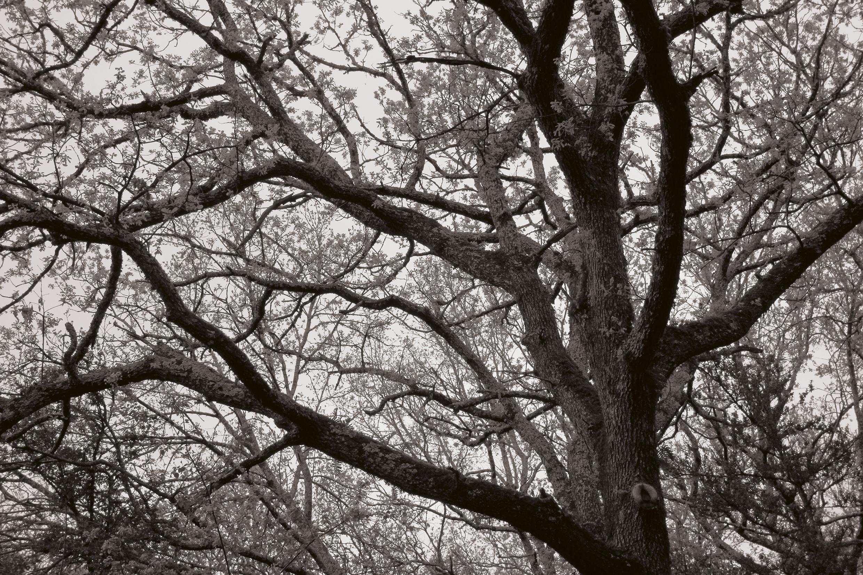 © Oliver Slappnig 10