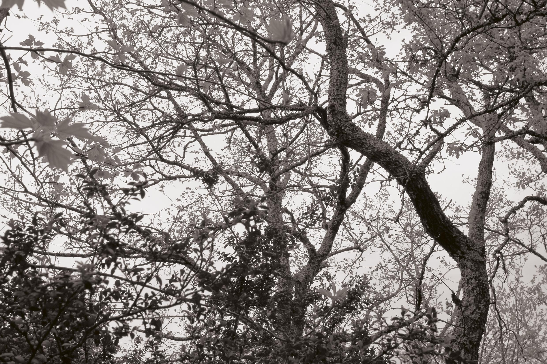 © Oliver Slappnig 6